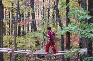 aerial adventure park - wi copy